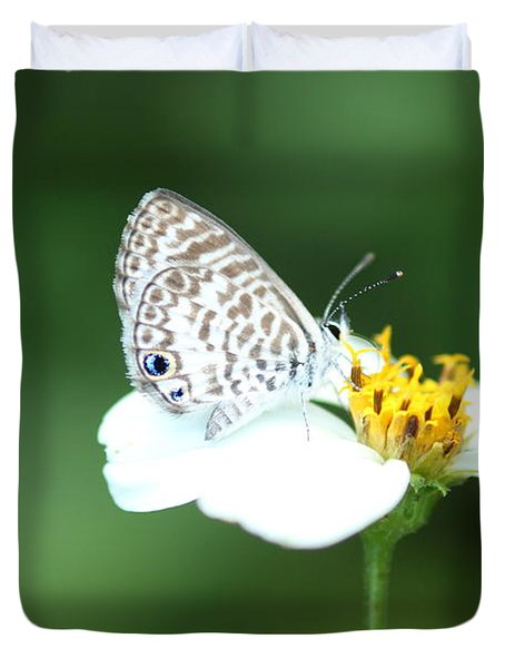 Duvet Cover featuring the photograph Cassius Blue On Wildflower by Greg Allore