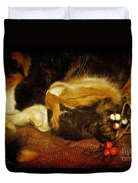 Cat Catnapping Duvet Cover by Lois Bryan