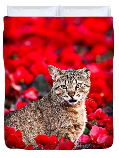 Cat In Red Duvet Cover