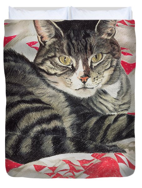 Cat On Quilt  Duvet Cover by Anne Robinson