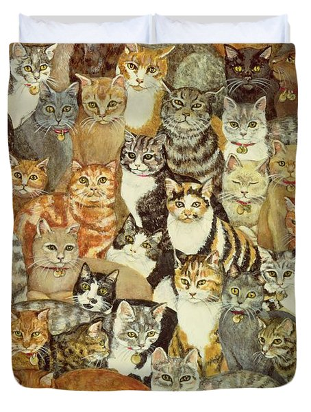 Cat Spread Duvet Cover