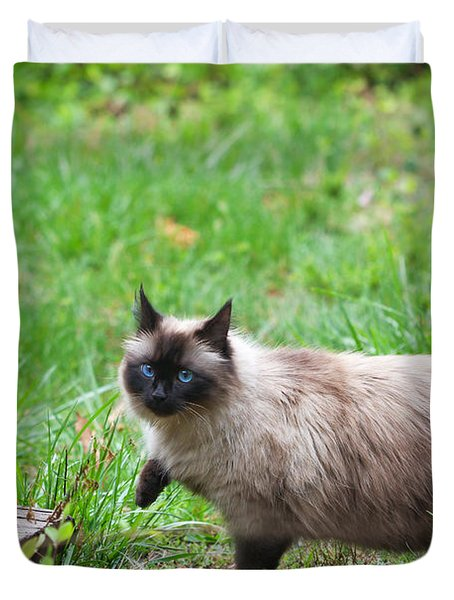 Cat Walking Duvet Cover