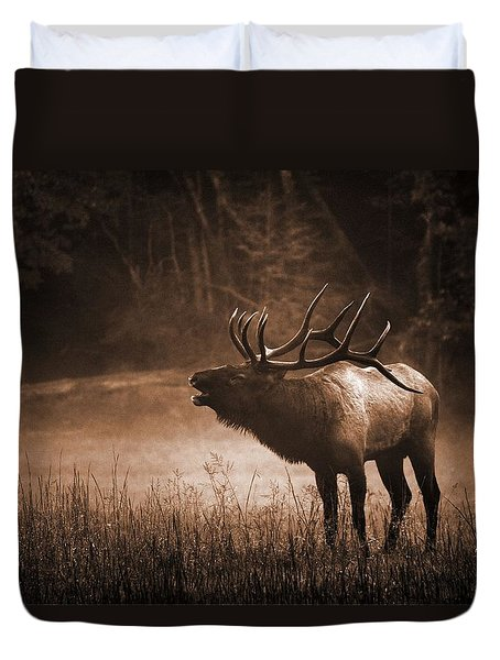 Cataloochee Bull Elk In Sepia Duvet Cover