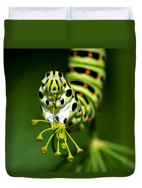 Caterpillar Of The Old World Swallowtail Duvet Cover by Torbjorn Swenelius