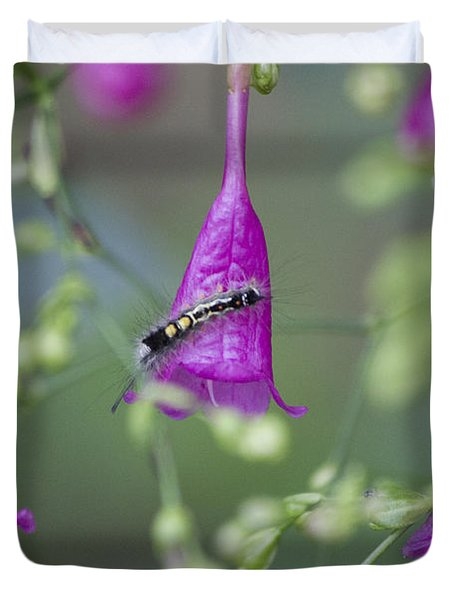 Caterpillar Playground  Duvet Cover by Nola Lee Kelsey