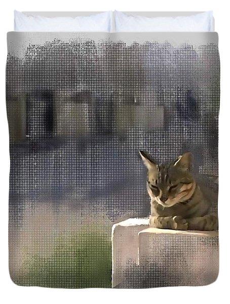 Catnap Duvet Cover by Usha Shantharam