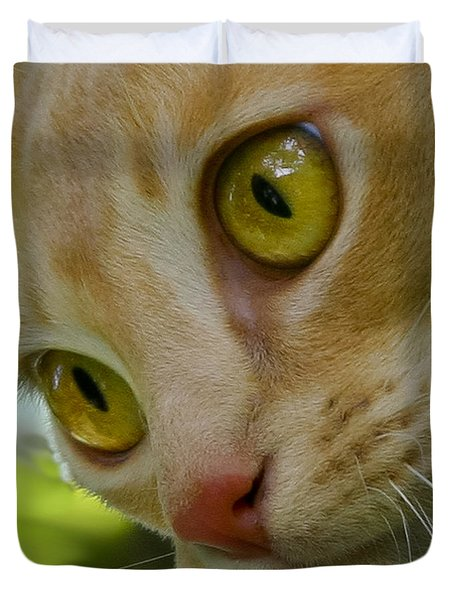 Cats Eyes Duvet Cover