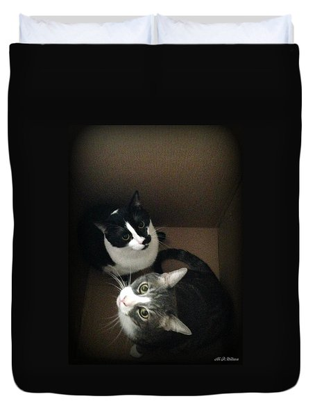 Cats In The Box Duvet Cover