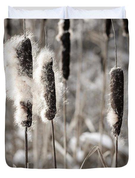 Cattails In Winter Duvet Cover by Elena Elisseeva