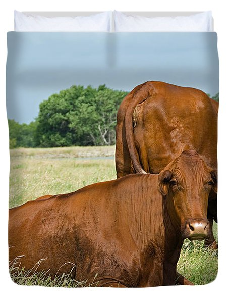 Duvet Cover featuring the photograph Cattle Grazing In Field by Charles Beeler