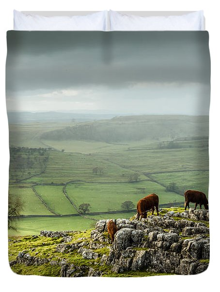 Cattle In The Yorkshire Dales Duvet Cover