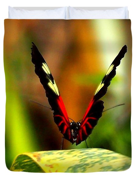 Duvet Cover featuring the photograph Cattleheart Butterfly  by Amy McDaniel