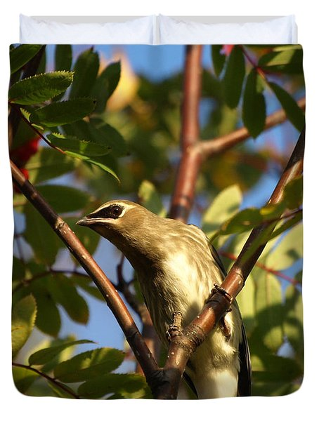 Duvet Cover featuring the photograph Cedar Waxwing by James Peterson