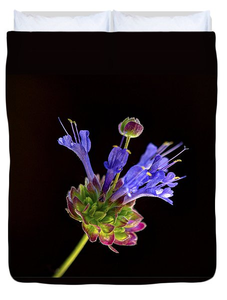 Duvet Cover featuring the photograph Celestial Blue Salvia by Joe Schofield