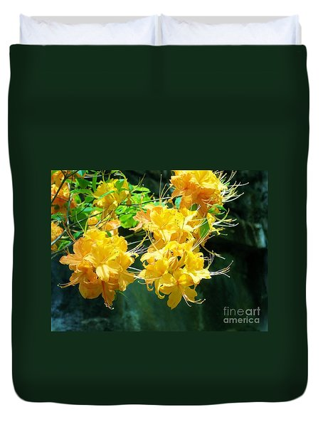 Duvet Cover featuring the photograph Centered by Roberta Byram