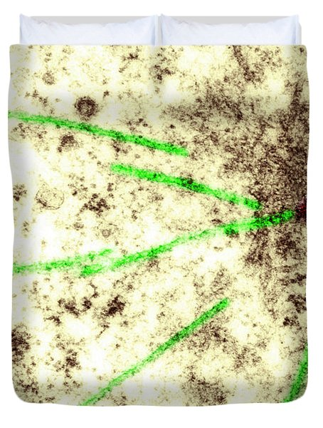 Centriole, Spindle Fibers, Chromosomes Duvet Cover