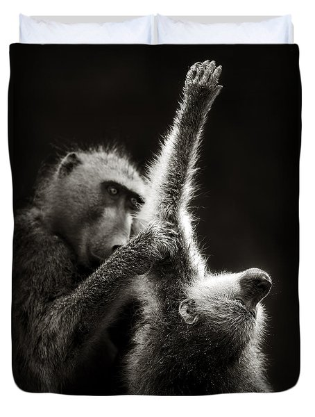 Chacma Baboons Grooming Duvet Cover by Johan Swanepoel