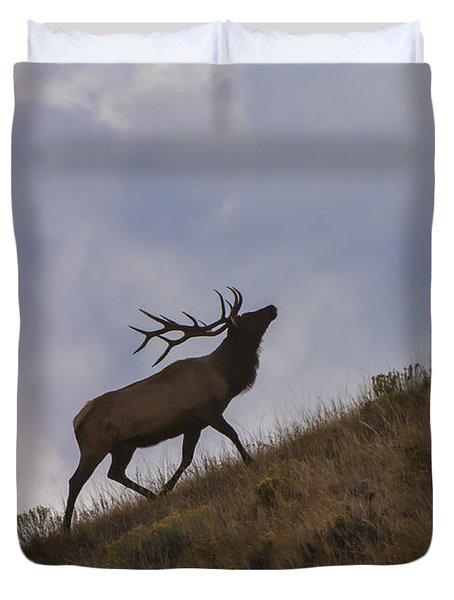 Challenge Of The Bull Elk Duvet Cover by Sandra Bronstein
