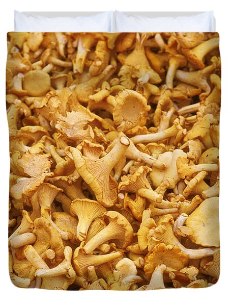 Chanterelle Mushroom Duvet Cover by Anonymous