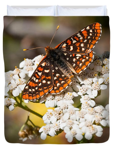 Checkerspot Butterfly On A Yarrow Blossom Duvet Cover by Jeff Goulden