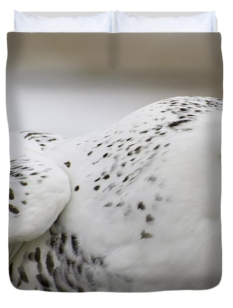 Cheeky Snow Owl Duvet Cover