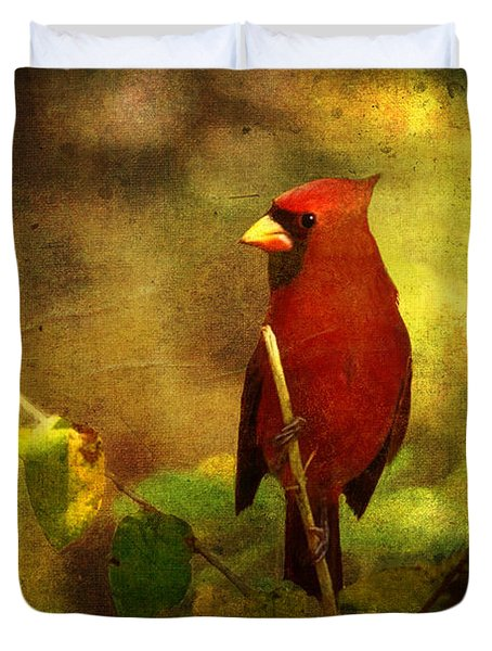 Cheery Red Cardinal  Duvet Cover by Lianne Schneider