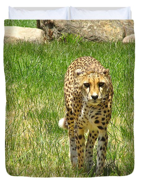 Duvet Cover featuring the photograph Cheetah Approaching by CML Brown