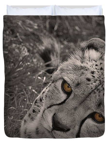 Cheetah Eyes Duvet Cover by Martin Newman