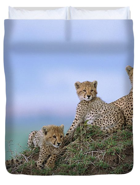 Cheetah Mother And Cubs Masai Mara Duvet Cover