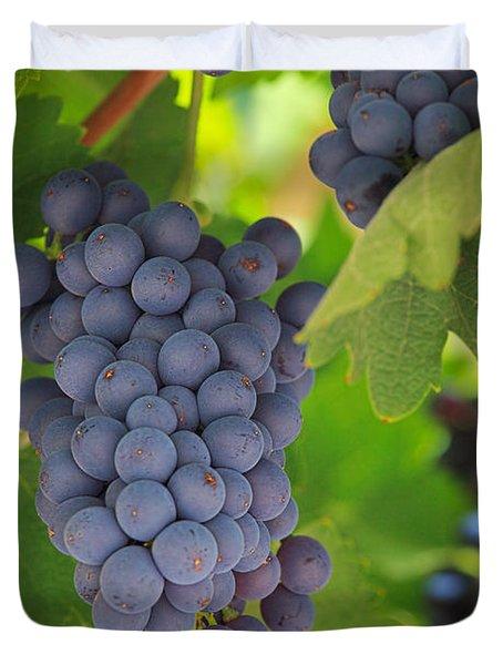 Chelan Blue Grapes Duvet Cover by Inge Johnsson