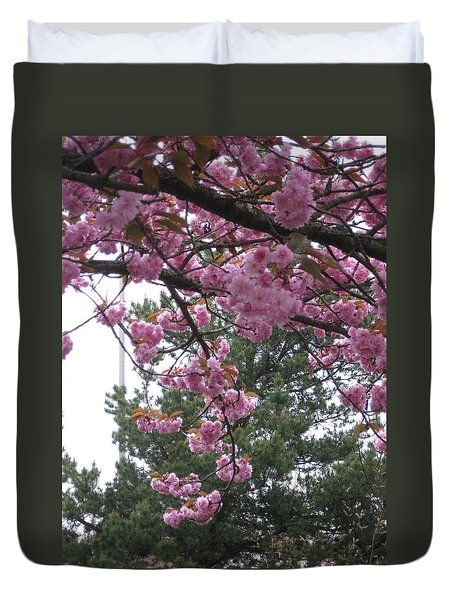 Cherry Blossoms 1 Duvet Cover by David Trotter