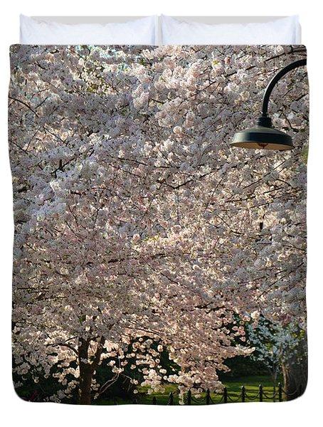 Cherry Blossoms 2013 - 060 Duvet Cover