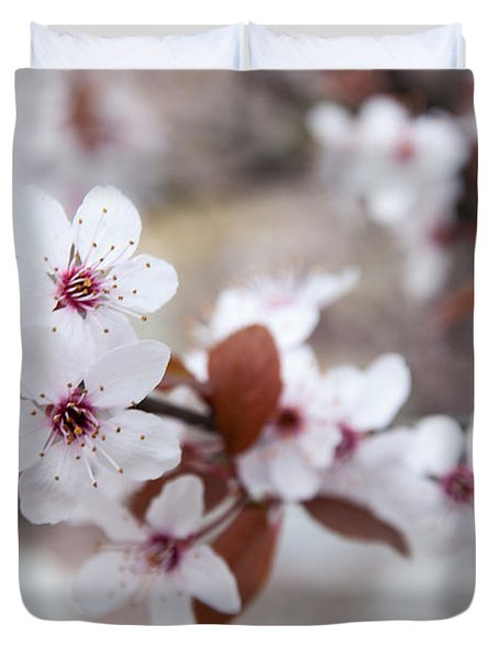 Cherry Blossoms Duvet Cover by Hannes Cmarits
