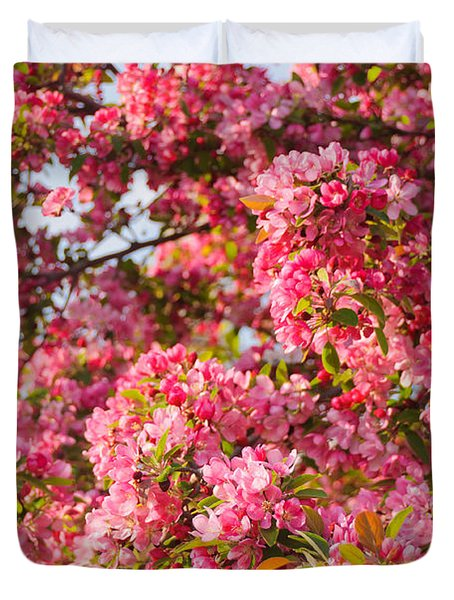 Duvet Cover featuring the photograph Cherry Blossoms In Washington D.c. by Mitchell R Grosky