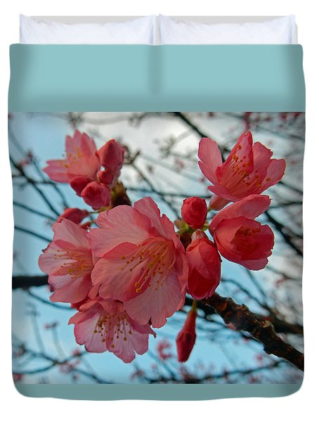 Cherry Blossoms Duvet Cover by Pamela Walton