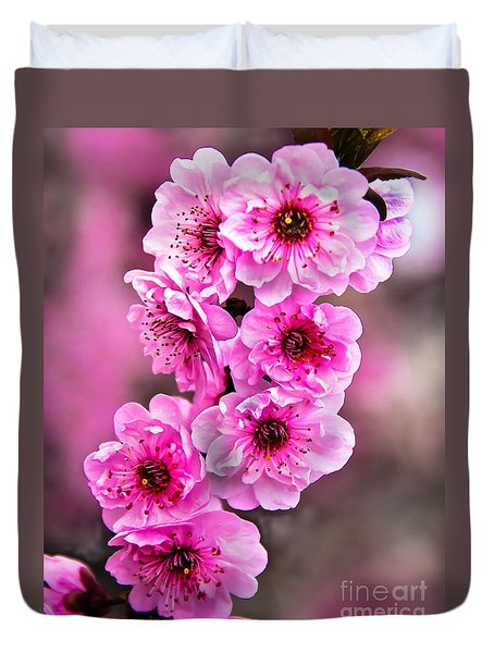 Cherry Blossoms Duvet Cover by Robert Bales