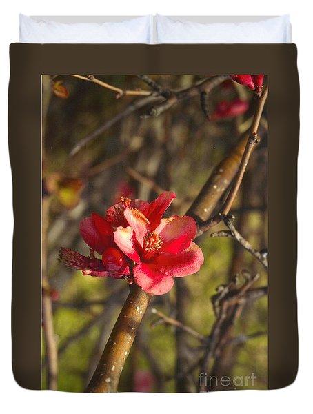 Cherry Blossoom Tree Duvet Cover