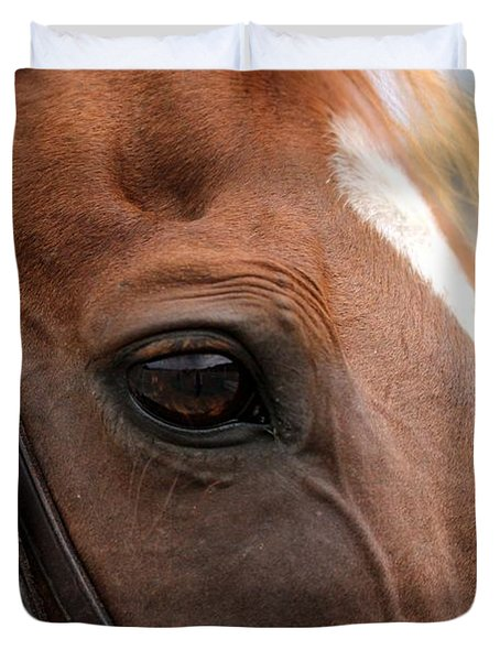 Chestnut Horse Eye Duvet Cover
