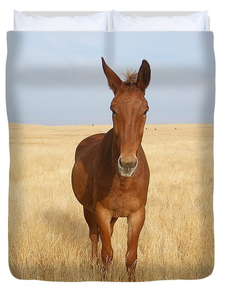 Chestnut Mule In Gold Duvet Cover