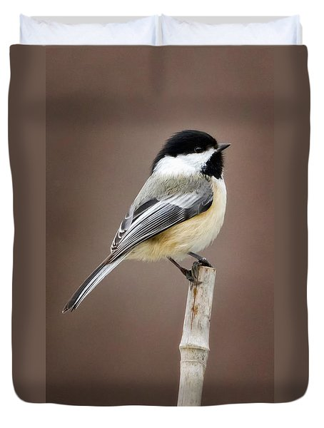 Chickadee Duvet Cover by Bill Wakeley