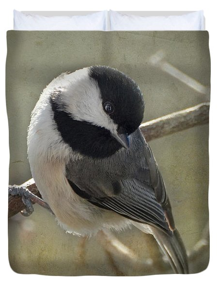 Chickadee Early Bird I Duvet Cover by Debbie Portwood