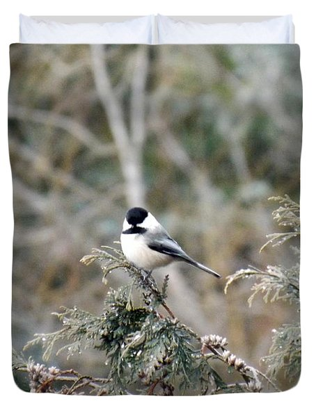 Duvet Cover featuring the photograph Chickadee In Cedar by Brenda Brown