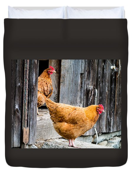 Chickens At The Barn Duvet Cover by Edward Fielding