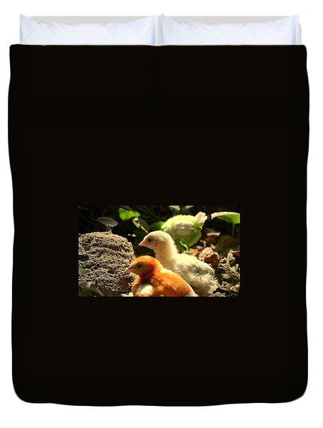 Duvet Cover featuring the photograph Cute Chicks by Salman Ravish