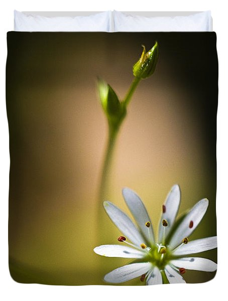 Chickweed Blossom And Bud Duvet Cover