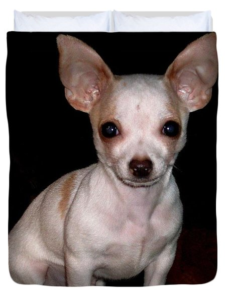 Duvet Cover featuring the photograph Chihuahua Puppy by Maria Urso