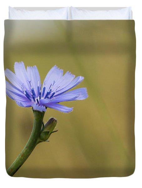 Chikory Cornflower Duvet Cover