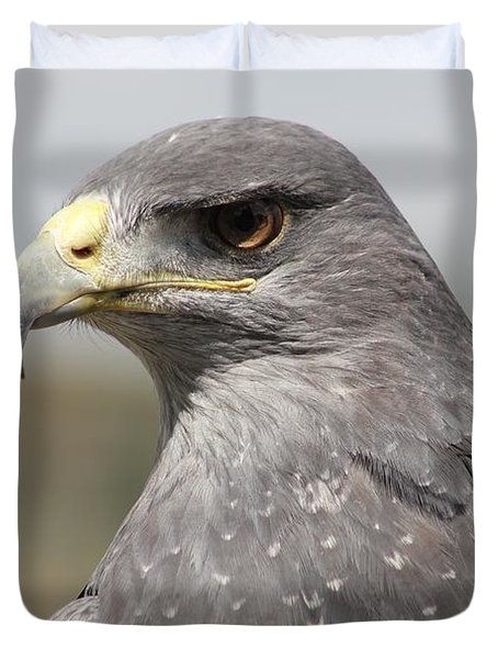 Chilean Eagle Duvet Cover