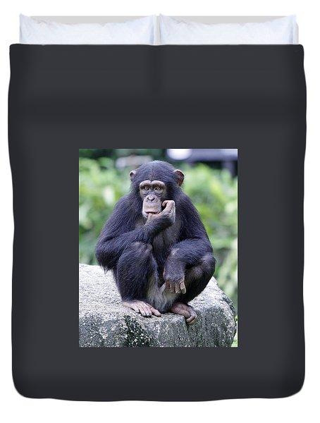 Chimp Sucking His Thumb Duvet Cover by Shoal Hollingsworth