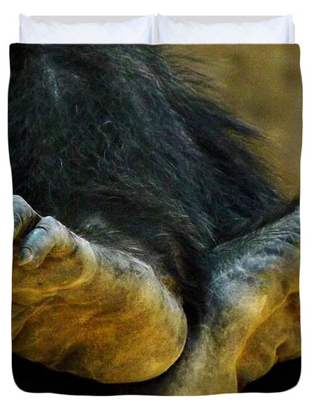 Chimpanzee Feet Duvet Cover by Clare Bevan